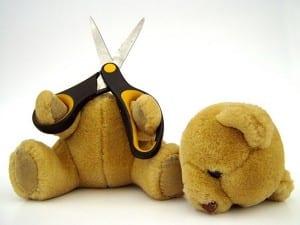 bear-suicide